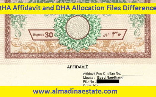 DHA Affidavit and DHA Allocation Files